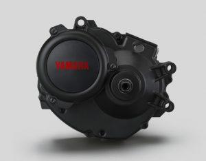 motore yamaha pw-se