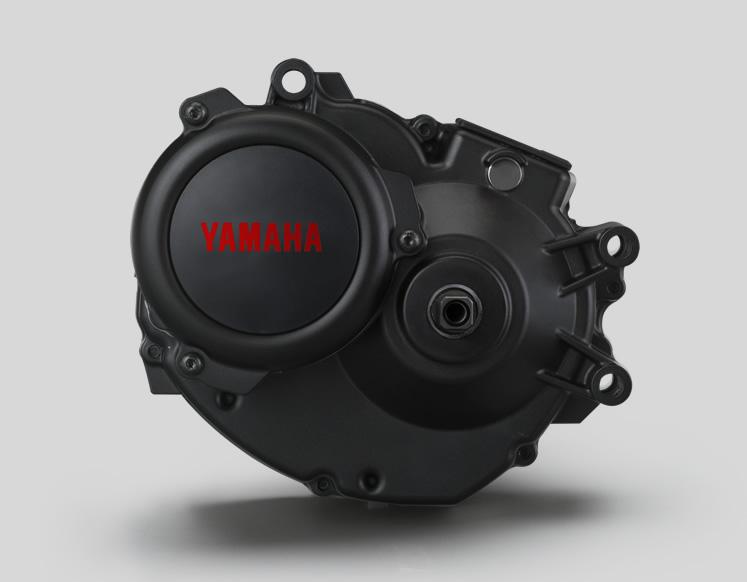 moteur yamaha pw-se