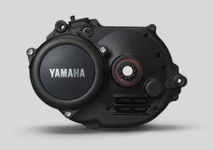 motore yamaha pw-x