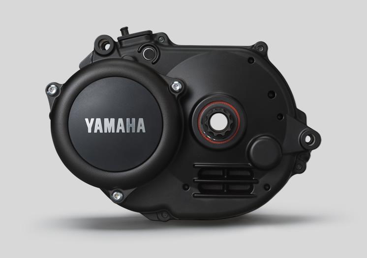 moteur yamaha pw-x
